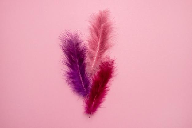 Lindas penas abstratas rosa e roxas em fundo pastel e textura suave de pena rosa branca em padrão colorido, fundo colorido, vista superior de penas coloridas
