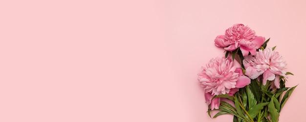 Lindas peônias rosa frescas em um fundo rosa com uma copyspace