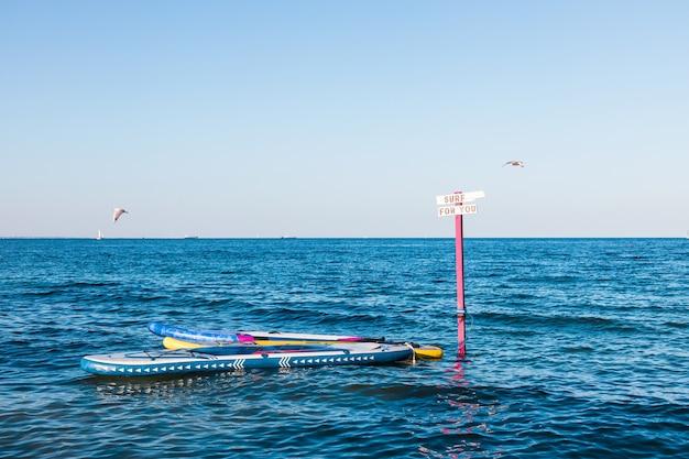 Lindas pranchas de surfe coloridas e brilhantes amarradas a um mastro de madeira para aluguel e atividades no mar