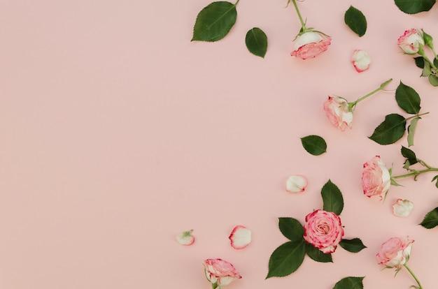 Lindas rosas frescas com espaço de cópia
