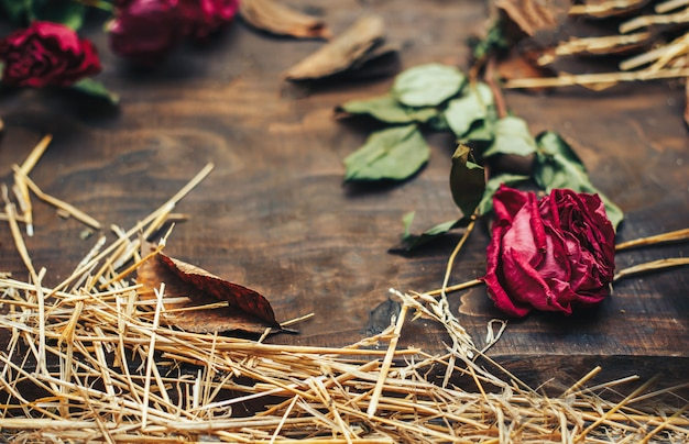 Lindas rosas secas em fundo de madeira