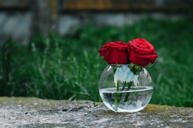 Lindas rosas vermelhas em vaso na mesa de madeira