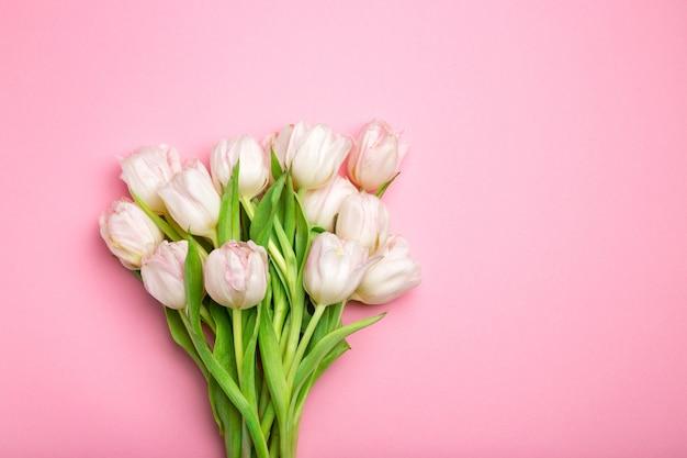 Lindas tulipas cor de rosa na rosa.