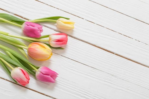 Lindas tulipas em fundo branco de madeira