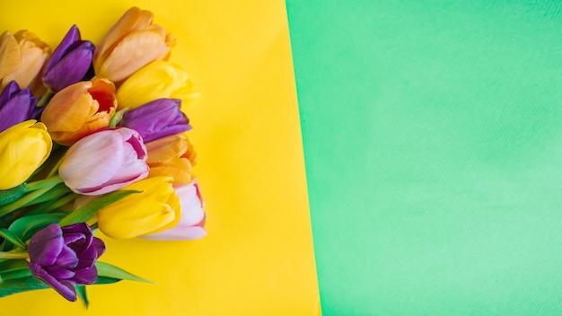 Lindas tulipas em um fundo multicolorido