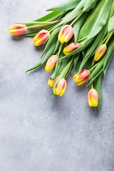 Lindas tulipas laranja amarelas