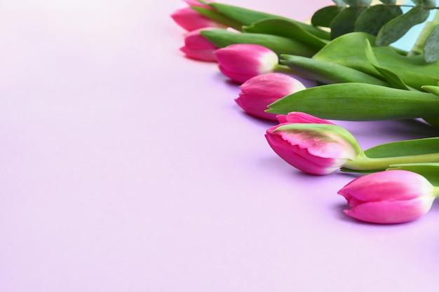Lindas tulipas para o dia das mães em cores