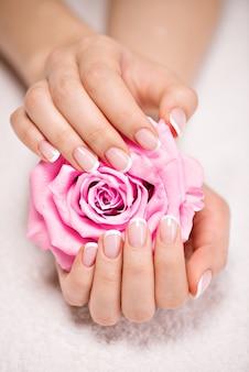 Lindas unhas de mulher com linda manicure francesa e rosa rosa