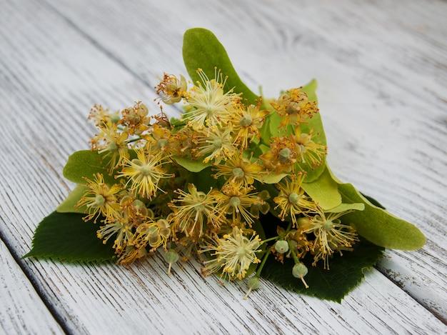 Linden flores na etable