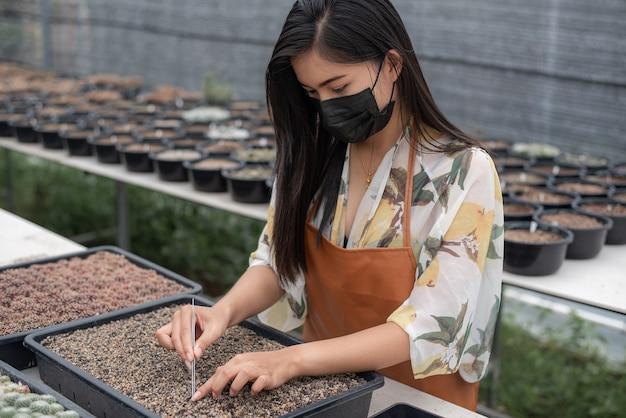 Lindo agricultor, verificando a qualidade dos cactos com tablet na panela na casa de fazenda de cactos.