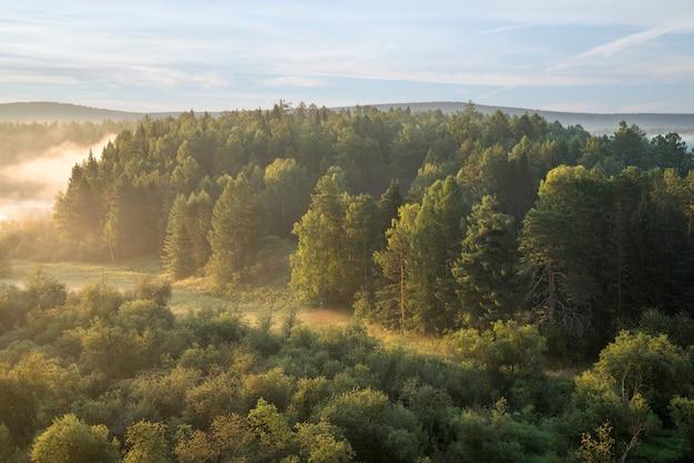 Lindo amanhecer enevoado no parque natural deer springs