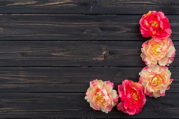 Lindo buquê de flores de peônia fúcsia e branco sobre o fundo escuro de madeira