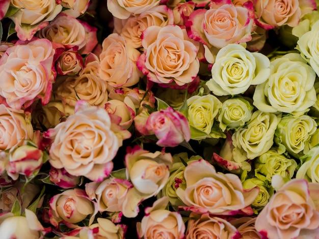 Lindo buquê de rosas