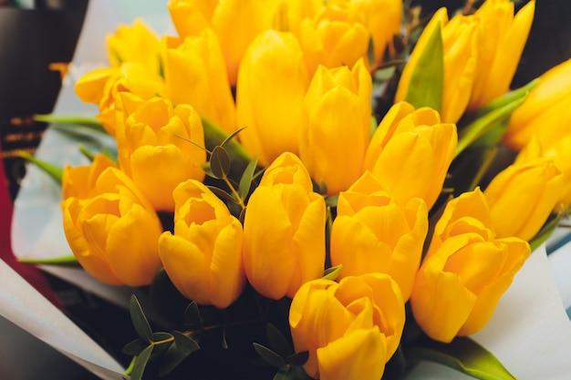 Lindo buquê de tulipas amarelas sobre fundo preto.