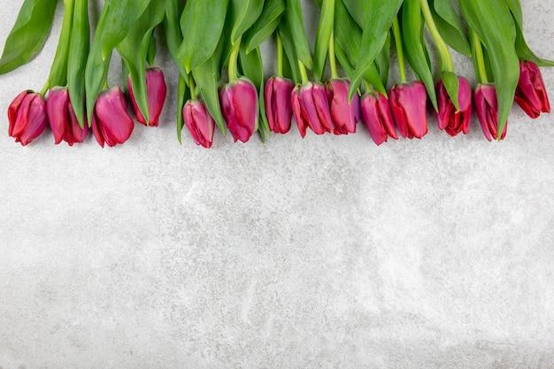Lindo buquê de tulipas rosa vermelha em um fundo de concreto texturizado cinza