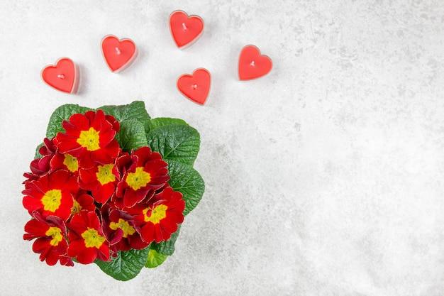 Lindo buquê rosa vermelha de flores da primavera e velas vermelhas na forma de um coração no fundo de concreto