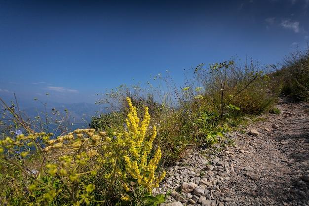 Lindo caminho de cascalho em alta montanha em dia de sol