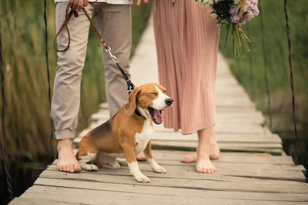 Lindo casal andando com ponte de cachorro.