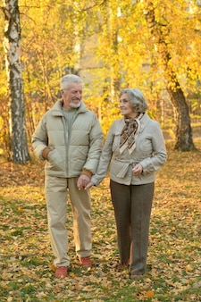 Lindo casal de idosos feliz no parque outono