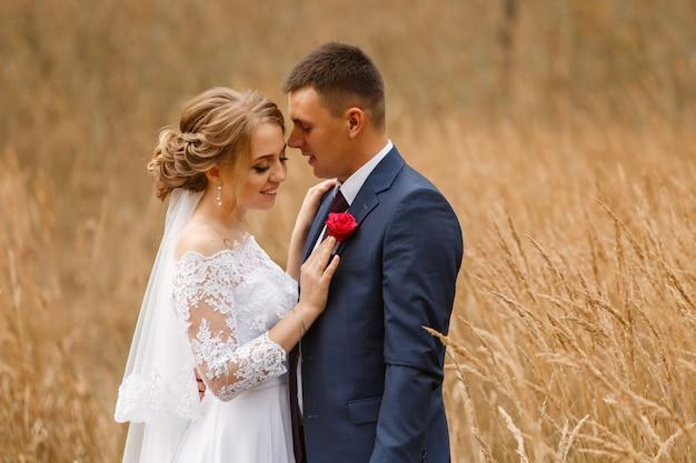Lindo casal de noivos em uma caminhada no campo de trigo. retrato de recém-casados sorridentes no dia ensolarado de verão. noiva e noivo beijando e abraçando na grama amarela ou dourada. dia do casamento