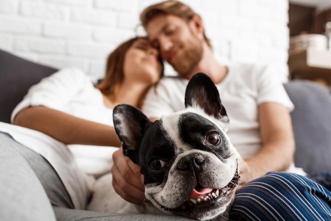 Lindo casal descansando no sofá com o cachorro. pug de foco.
