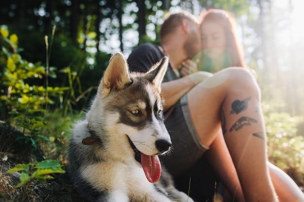 Lindo casal e um cachorro descansando na floresta