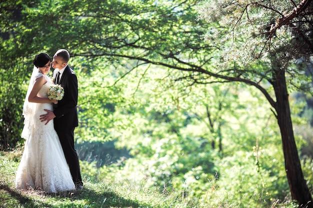 Lindo casal se beijando em uma linda floresta de pinheiros