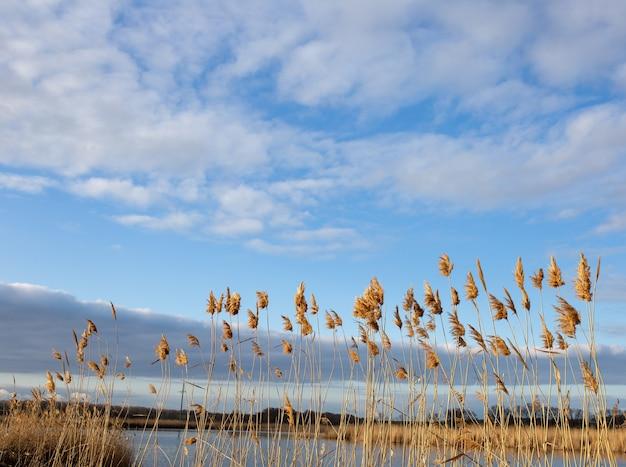 Lindo céu com nuvens sobre a paisagem de fundo do rio