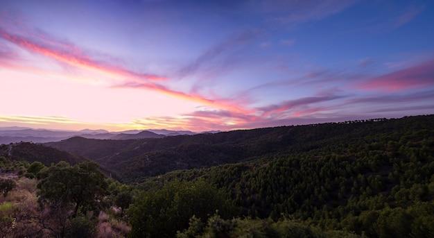 Lindo céu em tons de azuis com floresta