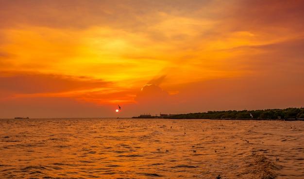 Lindo céu pôr do sol e nuvens sobre o mar. pássaro voando perto da floresta de mangue de abundância. céu cênico do por do sol em tailândia.