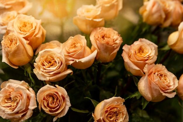 Lindo delicado buquê de rosas de chá. vista de cima. explosão solar.