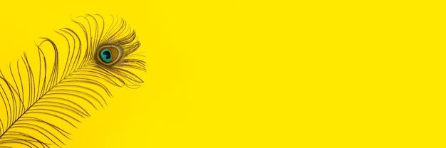 Lindo elegante iridescente azul ouro verde com olho mágico de pena de pavão exótico em fundo amarelo. bandeira.