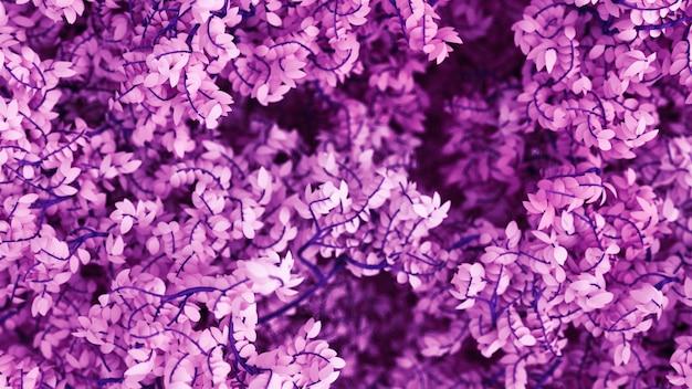Lindo fundo roxo com folhas. renderização em 3d.