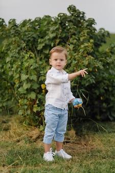 Lindo garoto brincando com bolhas em dia de sol no jardim.