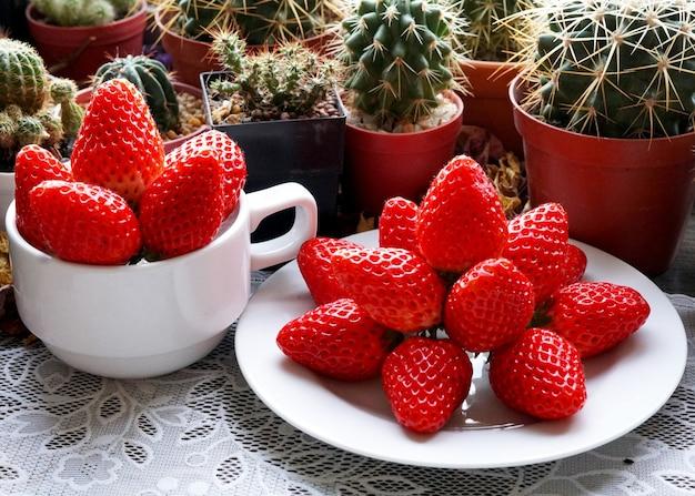 Lindo grupo de morango vermelho fresco e fundo de cactos e suculentas