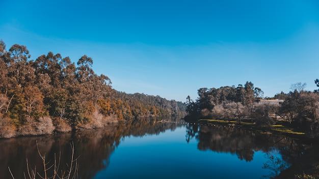 Lindo lago com o reflexo de uma falésia com muitas árvores na costa