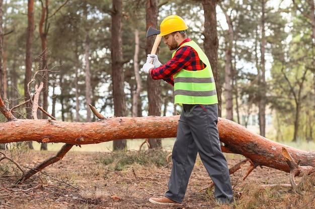 Lindo lenhador cortando árvores na floresta