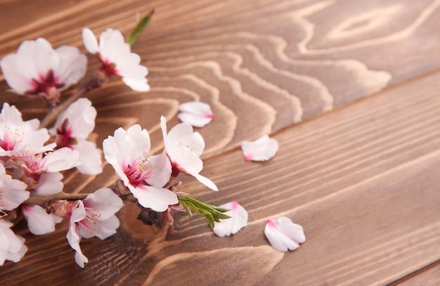 Lindo ramo florescendo em espaço de madeira