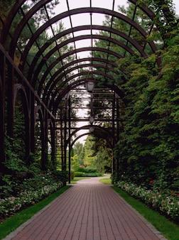 Lindo túnel romântico em arco no parque da cidade