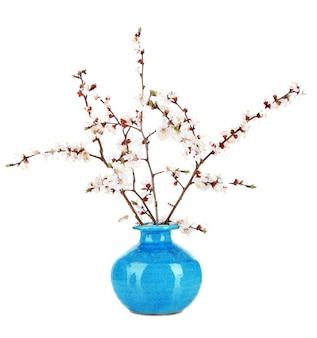 Lindos ramos florescendo em um vaso isolado no branco