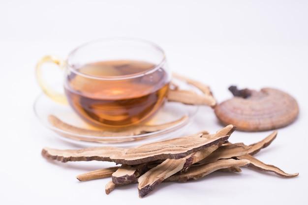 Lingzhi cogumelo ou fatia de cogumelo reishi e chá