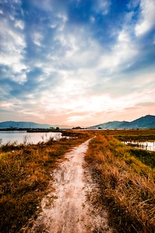 Linha da costa de terra nova ao pôr do sol