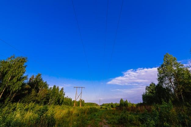 Linha de alta tensão na floresta em um dia de verão