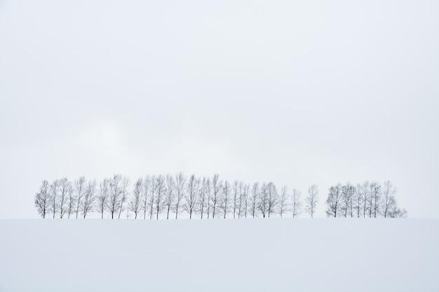 Linha de árvores na colina coberta de neve durante a queda de neve no dia de inverno