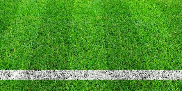 Linha de futebol na grama verde do campo de futebol. teste padrão verde do campo do gramado para o fundo do esporte.