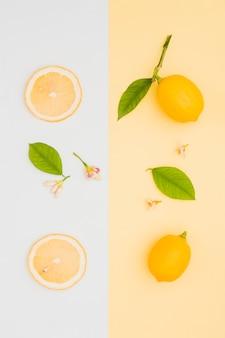 Linha de limão vista superior