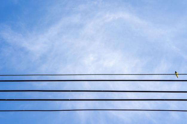 Linhas de energia com passarinho no cabo contra lindo céu azul nublado em dia ensolarado