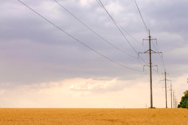 Linhas de energia em um campo de trigo