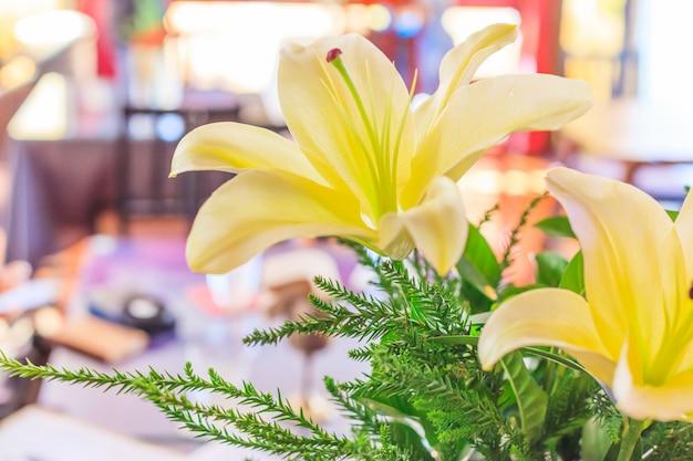Lírios amarelos de florescência bonitos (lilium), fundo colorido natural fresco da flor.