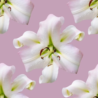 Lírios de lindas flores. padrão sem emenda de flor de flor de lírio. fundo natural floral.